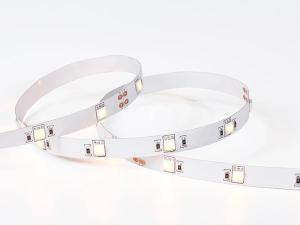5050 CCT LED Strips